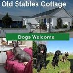 multi dog holidays carmarthenshire